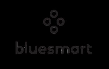valise bluesmart